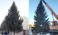 елка в чебаркуле