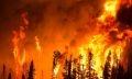 лесной пожар чебаркуль
