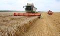 уборка зерновых в чебаркульском районе